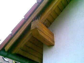 Systeme Zur Vogelabwehr Am Haus by Mitgedacht Vertrieb Dachreinigungssysteme Baustoffe