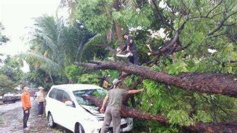 pohon tumbang  pondok indah timpa mobil toyota avanza