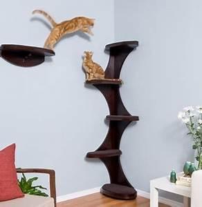 Arbre A Chat Solide : arbre chat avec arbre ~ Mglfilm.com Idées de Décoration