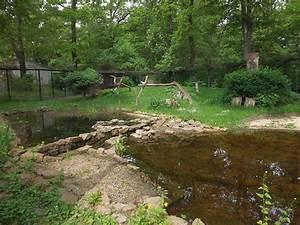 Tierpark Dessau Preise : kranichvoliere tierpark dessau der beutelwolf blog ~ Yasmunasinghe.com Haus und Dekorationen