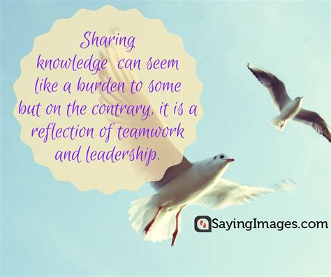 Quotes About Knowledge 30 Best Knowledge Quotes Sayingimages