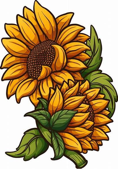 Sunflower Girasol Cartoon Dibujos Animados Flower Girassol