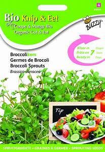Brokkoli Samen Kaufen : bio schnitt essen brokkoli kresse kaufen samen bestellen f r nur ~ Orissabook.com Haus und Dekorationen