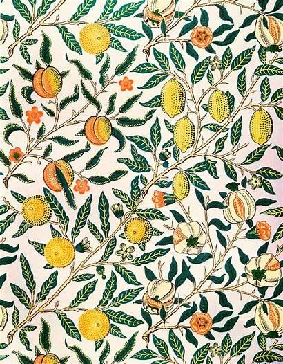 Morris William Patterns Rawpixel Wallpapers Plant Digitally