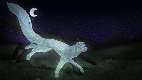 [warrior Cats] Running With The Stars By Terrorpussy On