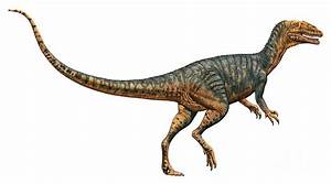 Gojirasaurus Pictures & Facts - The Dinosaur Database