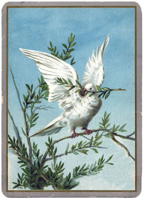 vintage christmas clip art extraordinary white dove