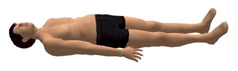 Prone Position Images Supine Position Definition Explanation Pros And Cons
