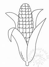 Template Corn Coloring Printable Pages Thanksgiving Drawing Candy Cob Stalk Sheets Preschool Husk Templates Sheet Indian Cartoon Fall Stalks Shocks sketch template