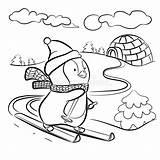 Coloring Penguin Skis Vector Ski Illustrations Vectors sketch template