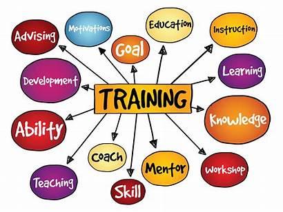 Training Job Strategies Effective Employee Management