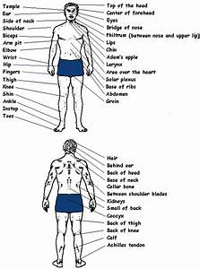 Self Defense Pressure Points Chart Hairstyles These Fighting Pressure Points