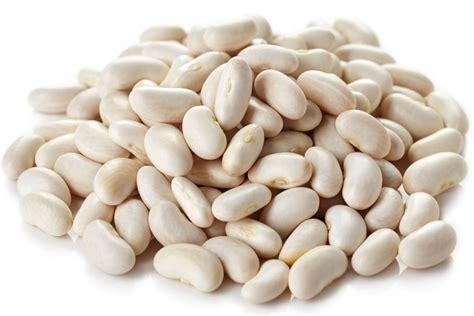 cuisiner haricot tout savoir sur les haricots blancs les choisir les