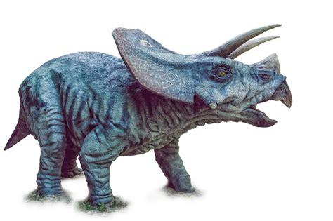 Dinosaur, Triceratops, PNG by fumar-porros on DeviantArt