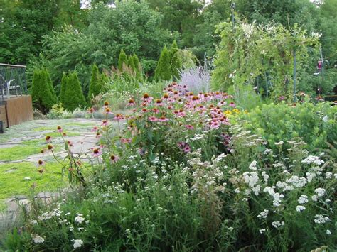 country flower garden garden therapy