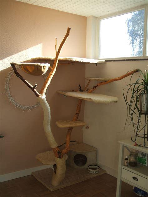 naturkratzbaum selber bauen kratzbaum selber bauen naturstamm diy naturkratzbaum selber bauen kratzbaum selber bauen