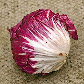 Radikio (500 gr) - Ushqehu ne menyre organike