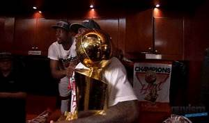 Miami Heat Trophy GIF - Find & Share on GIPHY