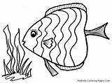Fish Coloring Pages Printable Rainbow Tropical Fishes Sheet Getcoloringpages Realistic Fl sketch template
