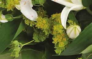 Bouquet Fleur De Coton : bouquet de lys blancs livraison de fleurs express en 4h 7 jours 7 l 39 agitateur floral ~ Teatrodelosmanantiales.com Idées de Décoration