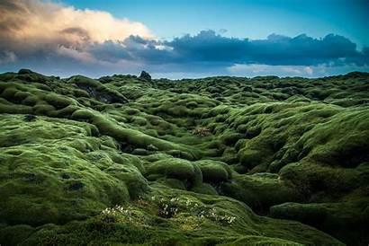 Landscape Irish Ireland Background Moss Wallpapers Backgrounds