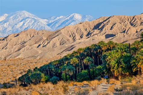 Tule Springs Fossil Beds National Monument by Obama The Monument Maker 23 New Monuments More Than Any