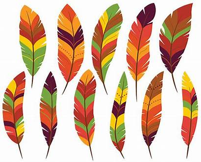 Feathers Turkey Thanksgiving Clip Clipart Fall Feather