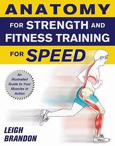Anatomy For Strength And Fitness Training For Speed By