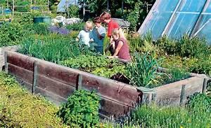 Gemüsegarten Anlegen Für Anfänger : grundwissen nutzgarten ~ Whattoseeinmadrid.com Haus und Dekorationen