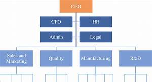 A Common Single Business Company Structure 10