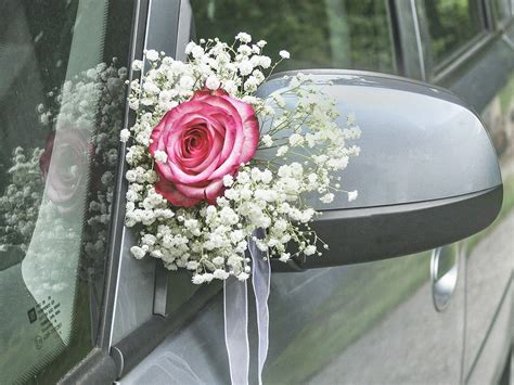 hundegeschirr fürs auto blumendeko auf der hochzeit mit schleierkraut hochzeit