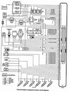 Wiring Diagram El Falcon