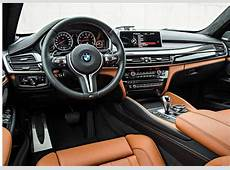 2017 BMW X6 Price and Release Date 2018 2019 Car Reviews