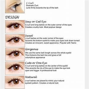 12 Best Eye Lash Education Images On Pinterest