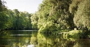 Jena Paradies Park : sal genuss am fluss jena gourmet k che mit blick auf die saale ~ Orissabook.com Haus und Dekorationen