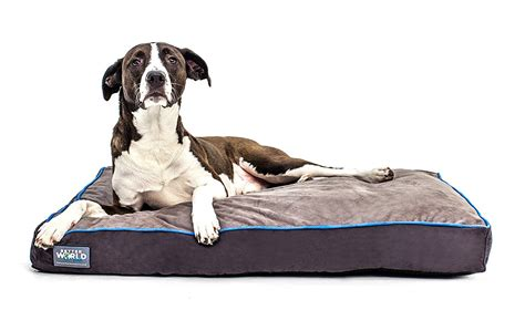 choose   dog bed  large dogs  small dogs