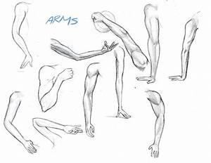 Arash Rod's Art: Arms and Legs Drawings