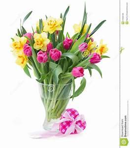 Tulpen In Vase : b ndel tulpen und narzissen im vase stockfoto bild 47500149 ~ Orissabook.com Haus und Dekorationen