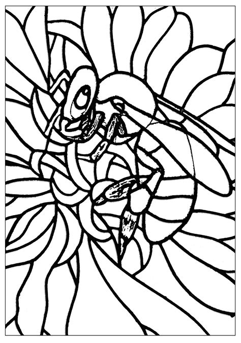 insects coloring pages  adults coloring adult bee page imageinsectescoloring