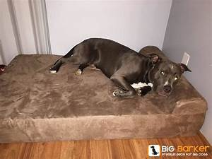 1000 images about big barker beauties on pinterest With best dog bed for pitbull