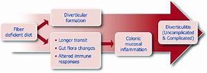 Pathophysiology Of Diverticular Disease  From Fiber
