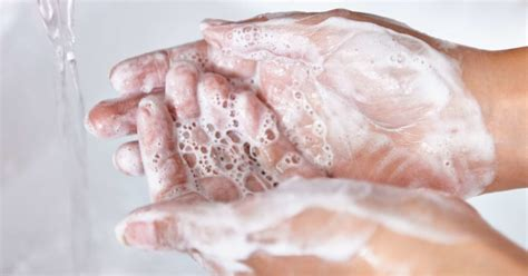 Handwashing with cold water just as good as hot water for ...