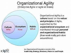 Using Keystone Habits to Transform Enterprises and Achieve ...