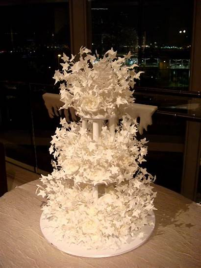 Cake Amazing Cakes February Unique 2008 Designs