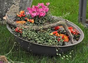Schale Dekorieren Frühling : pflanzen schale kranz ampel ~ Cokemachineaccidents.com Haus und Dekorationen