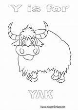 Coloring Yak Personal Gemerkt Learn Stuff Alphabet sketch template