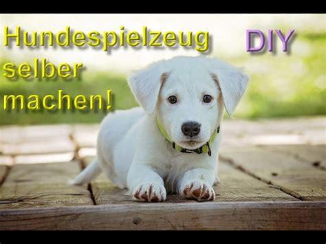 Diy Hundespielzeug Selber Machen  Bauen  Spielzeuge Für