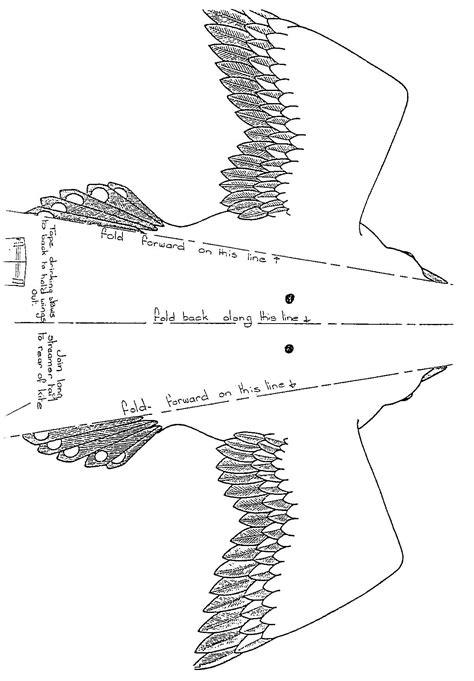 bird kite template google search kite template bird