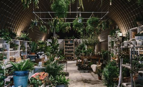 Forest London Brings Rare And Exotic Plants To The City