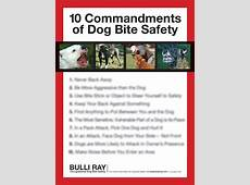 #726 Safety Poster 10 Commandments ODBS – Bulli Ray